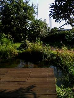 ビルの屋上庭園