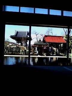 太岳院本堂から富士山方面を望む
