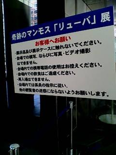 撮影禁止『リューバ』展