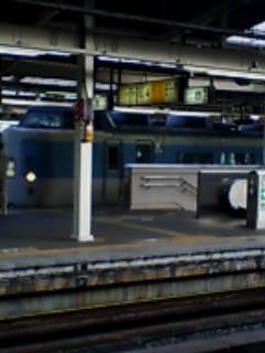 183系団体列車